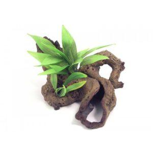 Blue Ribbon Decor Mopani Wood W/plants Medium 33 X22 X15cm