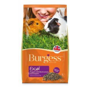 Burgess Excel Guinea Pig Nuggets Blackcurrant & Oregano 2kg