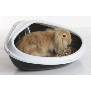 Concha Small Animal Litter Tray Assorted 51x38x22.5cm