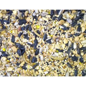 Dawn Chorus Blue Tit Insect & Mealworm Mix 2kg