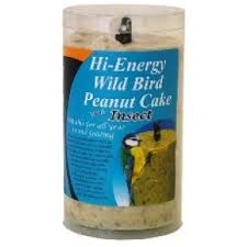 Dawn Chorus High Energy Peanut Suet Cake with Insects x12