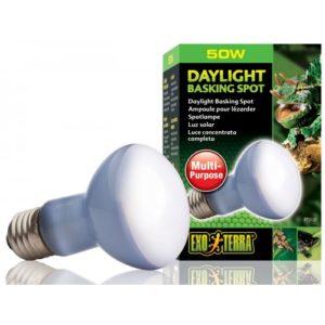 Exo Terra Daylight Basking Bulb R20 50w