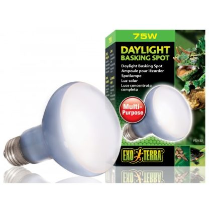Exo Terra Daylight Basking Bulb R20 75w