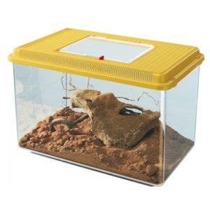 Geo Plastic Tank Maxi Mixed Colours 41.3x26x29.8cm
