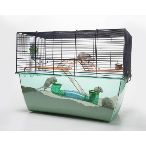 Habitat Hamster/gerbil Cage Extra Large 70x37x56cm