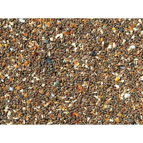 J&j Chicken Corn Extra With Oyster Shell Grit 20kg