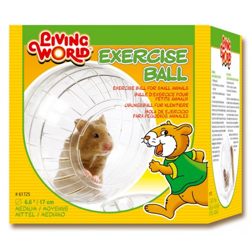 Living World Exercise Ball With Stand Medium 17cm