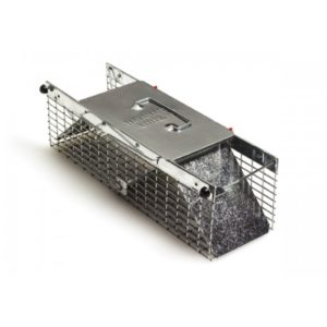 Pest Stop Squirrel Trap