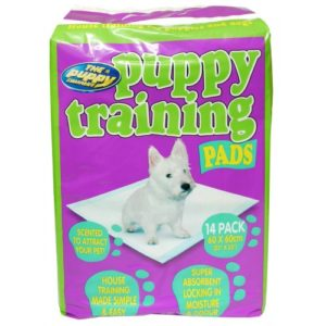 Pup Trainer 14pack