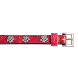Sparkly Paw Crock Leather Collar Cerise 35cm/14″ Sz2