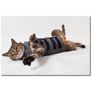 Thundershirt For Cats Heather Grey Large