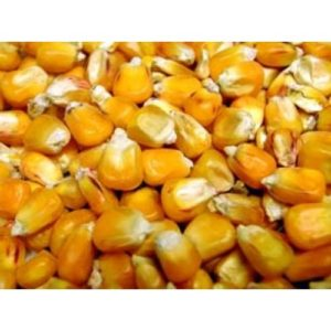 Willsbridge French Maize 20kg