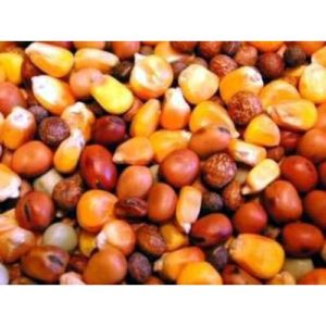 Willsbridge Pigeon Popular Mix 20kg