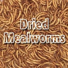 Bulk Dried Mealworms 10kg