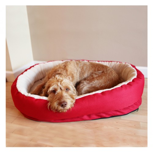 40 Winks Orthopedic Bed Red 86cm (34″)