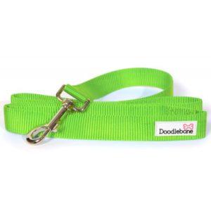 Doodlebone Bold Nylon Lead Green Large