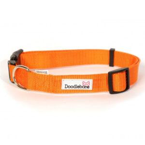 Collars Doodlebone