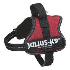 Julius K9 Power Harness